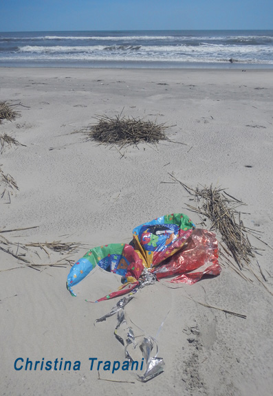 Graduation balloons on a remote barrier island of Virginia's eastern shore.